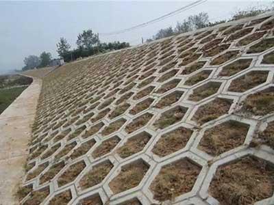 水泥护坡砖