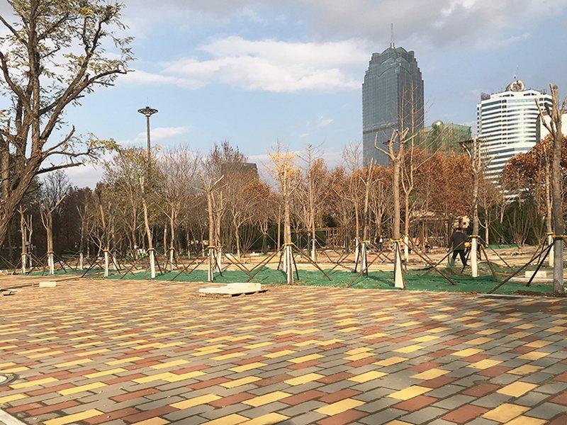 保定市人民公园改造项目